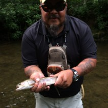 Mills River, NC Trout